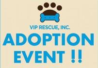 vip event logo 1