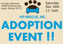 Adoption Event 2017