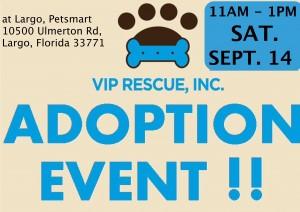 2019.9.14.adoptionevent